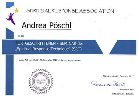 Zertifikat-SRT_Seite_2.jpg